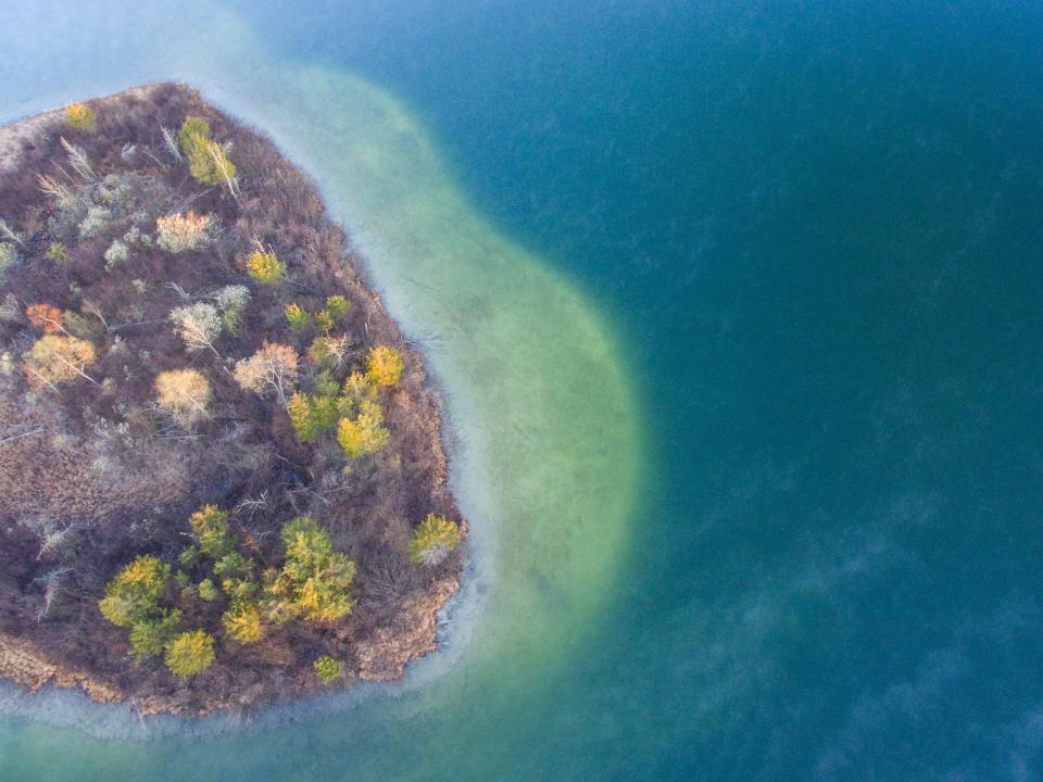 tree plant nature fall autumn aerial view sea ocean blue water island