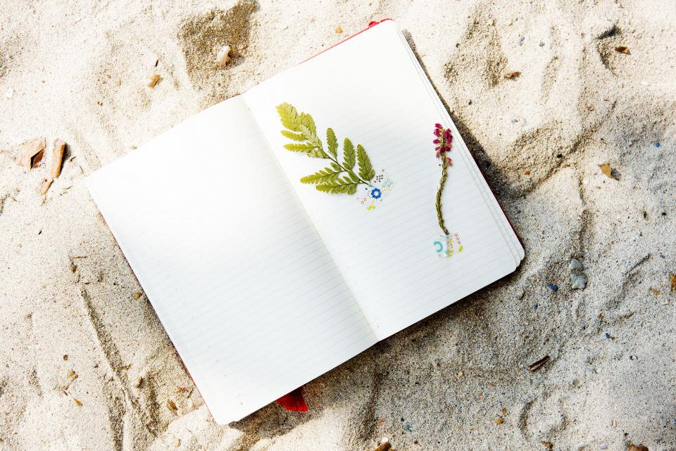 notebook notepad paper flowers beach sand sunshine summer diary